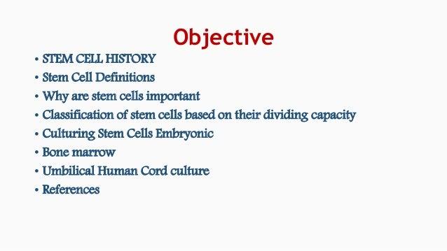 STEM CELL CULTURE  Slide 2