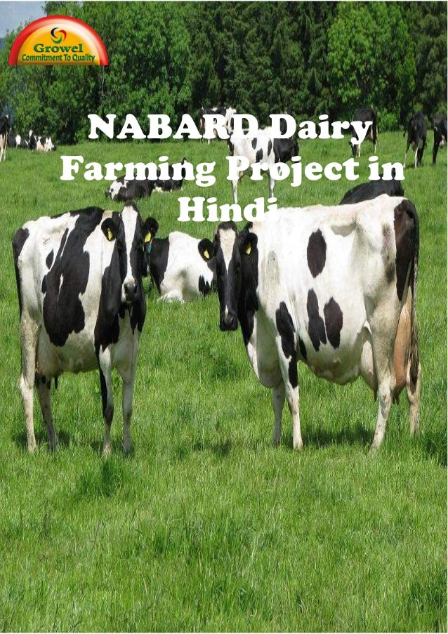 NABARD Dairy Farming Project in Hindi