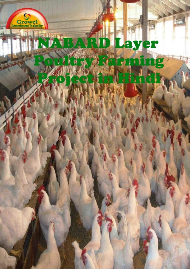 NABARD Layer Poultry Farming Project in Hindi