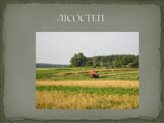Лісостепова зона простягається від Передкарпаття до західних відрогів Середньоросійської височини майже на 1 100 км. Вона ...