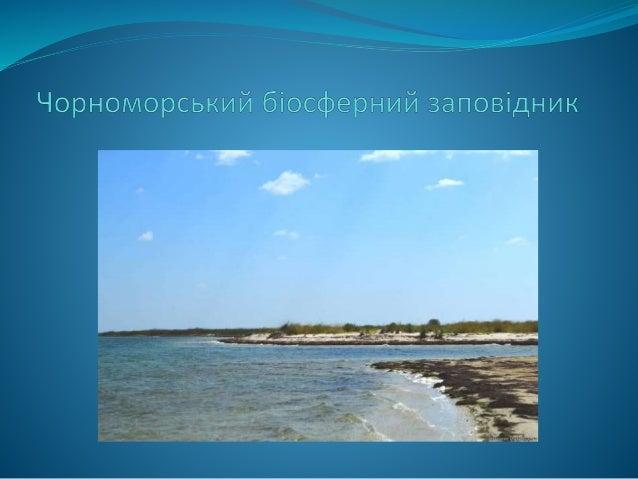 Заповідник, розташований на території та акваторії Херсонської та частково Миколаївської областей Україні.