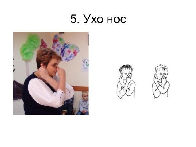 5. Ухо нос