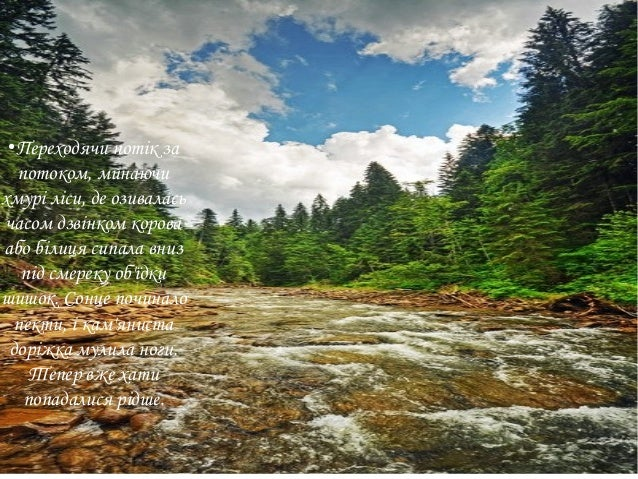 ● Переходячи потік за потоком, минаючи хмурі ліси, де озивалась часом дзвінком корова або білиця сипала вниз під смереку о...