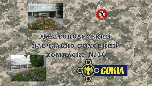 """Рій """"ЗАХИСНИКИ"""" навчально-виховний комплекс №16 Slide 2"""