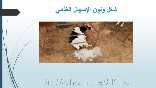 الغذائي اإلسهال ولون شكل Dr. Mohammed Khidr