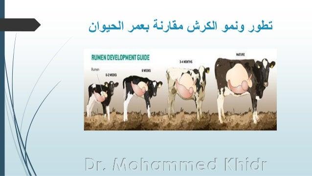الحيوان بعمر مقارنة الكرش ونمو تطور Dr. Mohammed Khidr