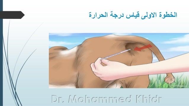 الحرارة درجة قياس االولى الخطوة Dr. Mohammed Khidr