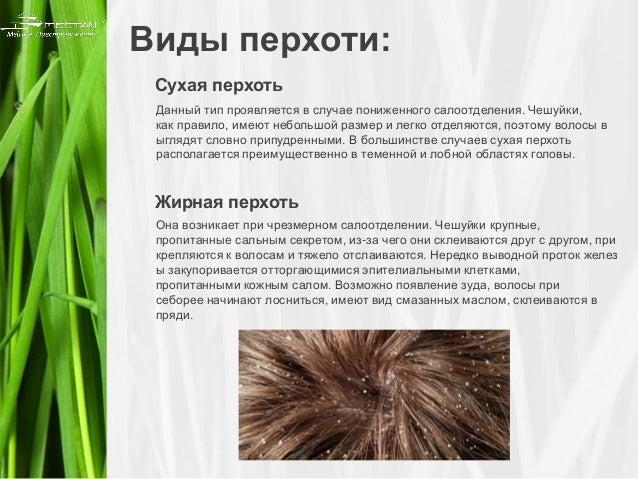 ШколаЖизни.ру