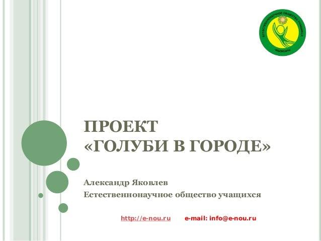 ПРОЕКТ «ГОЛУБИ В ГОРОДЕ» Александр Яковлев Естественнонаучное общество учащихся http://e-nou.ru e-mail: info@e-nou.ru