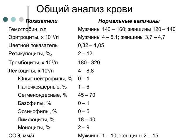 Общий анализ крови при в12 дефицитной анемии медицинская справка на вождение минск