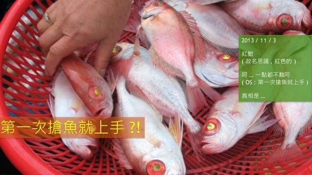 2013 / 11 / 3 紅魽 ( 故名思議 , 紅色的 ) 呵 … 一點都不難阿 ( OS : 第一次搶魚就上手 ) 真相是 … 第一次搶魚就上手 ?!