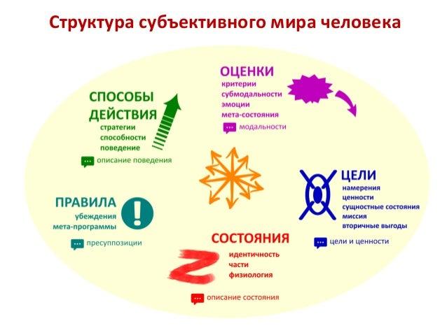 Структура субъективного мира человека