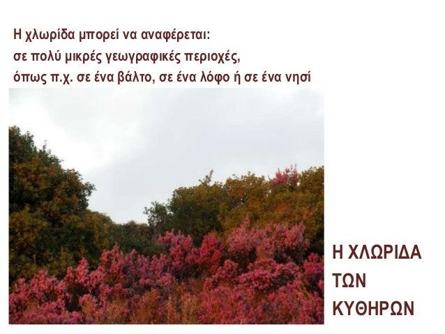 ΧΛΩΡΙΔΑ Slide 2