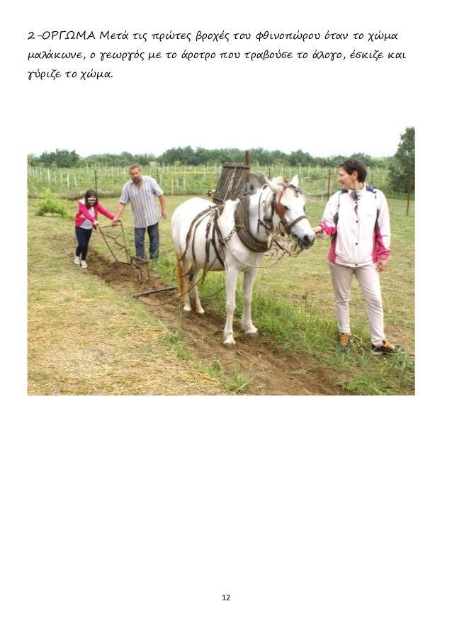 12 2-ΟΡΓΩΜΑ Μετά τις πρώτες βροχές του φθινοπώρου όταν το χώμα μαλάκωνε, ο γεωργός με το άροτρο που τραβούσε το άλογο, έσκ...