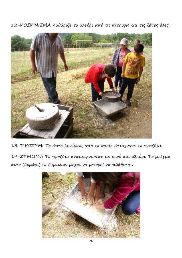 26 12-ΚΟΣΚΙΝΙΣΜΑ Καθάριζε το αλεύρι από τα πίτουρα και τις ξένες ύλες. 13-ΠΡΟΖΥΜΙ Το φυτό λυκίσκος από το οποίο φτιάχνανε ...