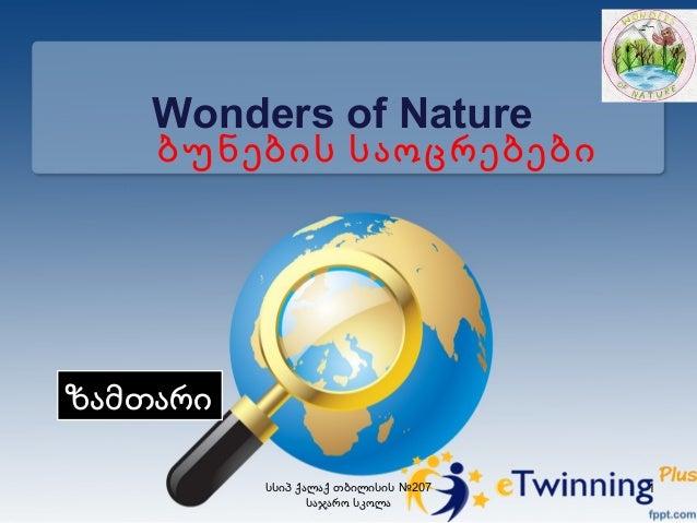 Wonders of Nature ბუნების საოცრებები ზამთარი №207სსიპ ქალაქ თბილისის საჯარო სკოლა 1