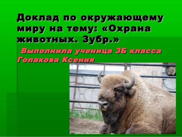 Доклад на тему охрана животных 7915