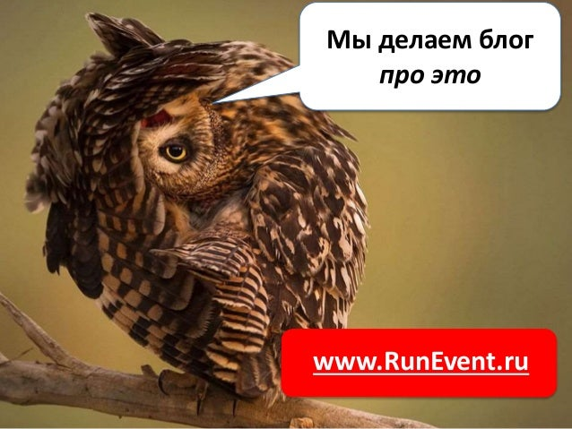 www.RunEvent.ru Мы делаем блог про это