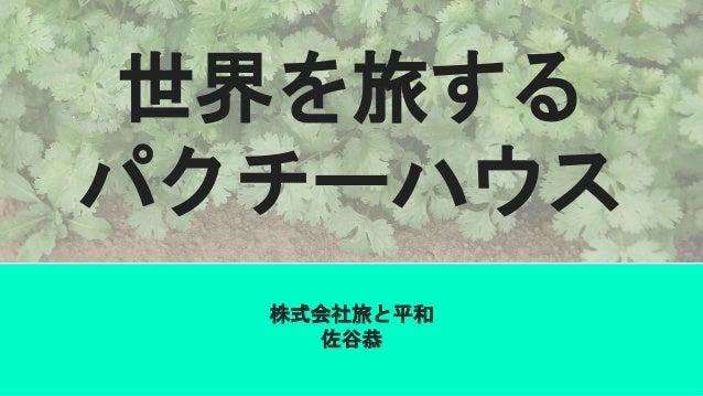 世界を旅する パクチーハウス 株式会社旅と平和 佐谷恭