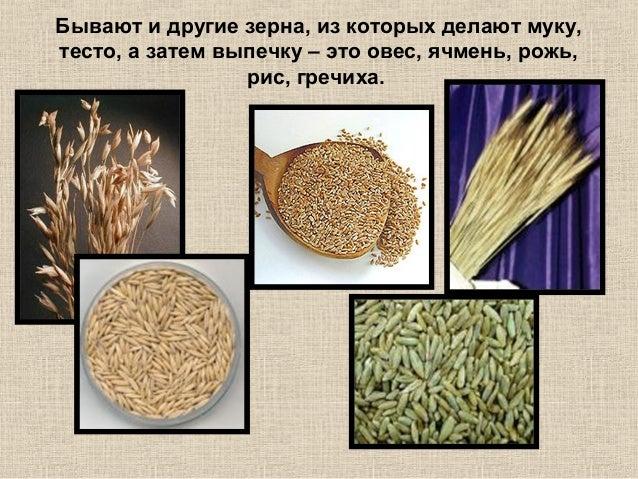 из чего делают хлеб фото