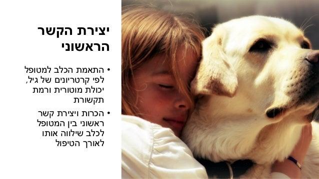 הקשר יצירת הראשוני •למטופל הכלב התאמת גיל של קרטריונים לפי, ורמת מוטורית יכולת תקשורת •קשר ...