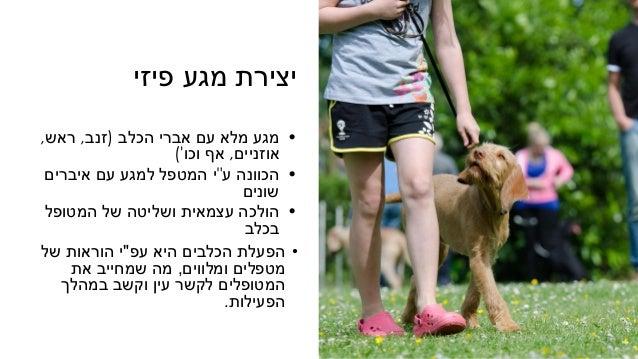 """פיזי מגע יצירת •הכלב אברי עם מלא מגע(זנב,ראש, אוזניים,וכו אף') •ע הכוונה""""איברים עם למגע..."""