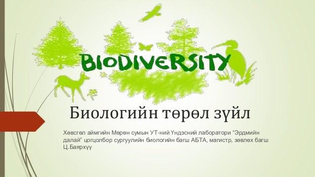 """Биологийн төрөл зүйл Хөвсгөл аймгийн Мөрөн сумын УТ-ний Үндэсний лаборатори """"Эрдмийн далай"""" цогцолбор сургуулийн биологийн..."""