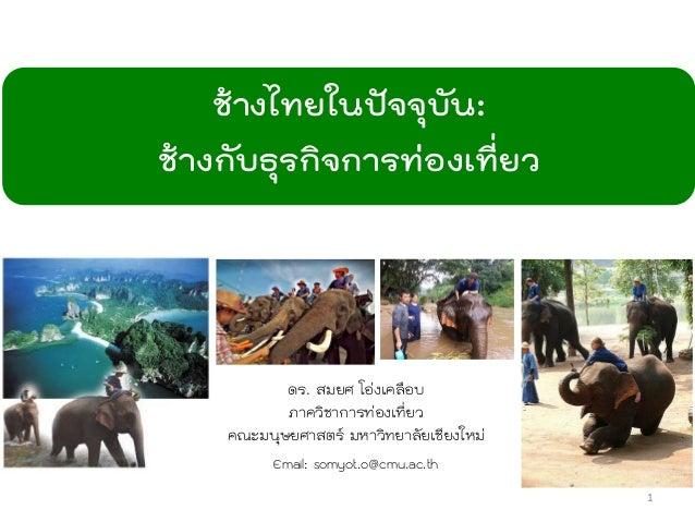 ช้างไทยในปัจจุบัน: ช้างกับธุรกิจการท่องเที่ยว ดร. สมยศ โอ่งเคลือบ ภาควิชาการท่องเที่ยว คณะมนุษยศาสตร์ มหาวิทยาลัยเชียงใหม่...