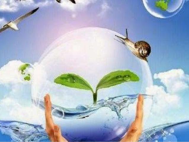 вода джерело життя-вчитель