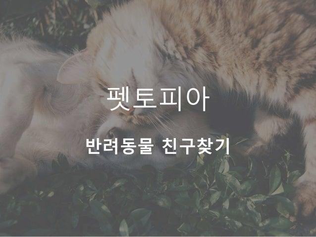 펫토피아 반려동물 친구찾기