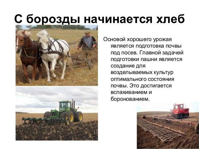 ПОСЕВ Посев — внесение семян зерновых культур в специально подготовленную почву.