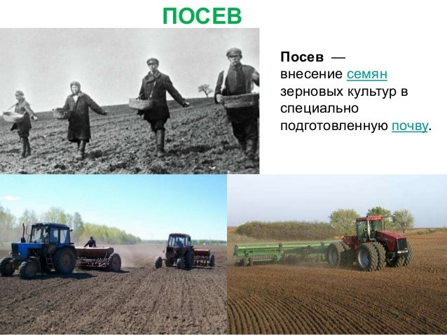 УБОРКА УРОЖАЯ Убо́ рка урожа́я зерновых культур — совокупность работ на завершающей стадии их выращивания.