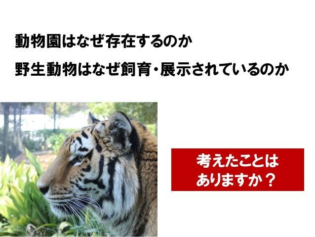 動物園はなぜ存在するのか 野生動物はなぜ飼育・展示されているのか 考えたことは ありますか?