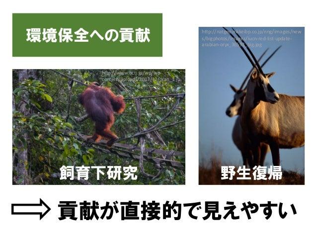 環境保全への貢献 野生復帰飼育下研究 貢献が直接的で見えやすい http://natgeo.nikkeibp.co.jp/nng/images/new s/bigphotos/images/iucn-red-list-update- arabi...