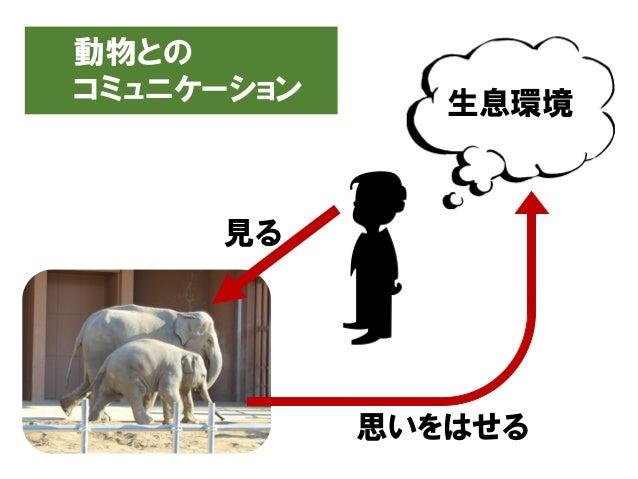 動物との コミュニケーション 見る 思いをはせる 生息環境