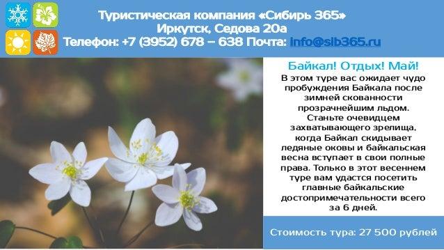 Туристическая компания «Сибирь 365» Иркутск, Седова 20а Телефон: +7 (3952) 678 – 638 Почта: info@sib365.ru Байкал! Отдых! ...