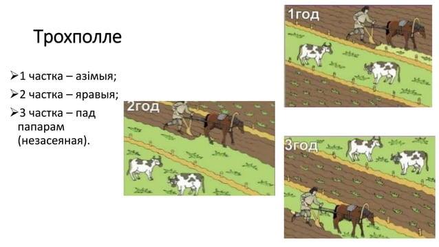 Трохполле 1 частка – азімыя; 2 частка – яравыя; 3 частка – пад папарам (незасеяная).