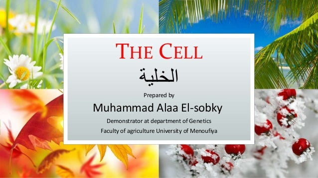 THE CELL الخلية Prepared by Muhammad Alaa El-sobky Demonstrator at department of Genetics Faculty of agriculture Univers...