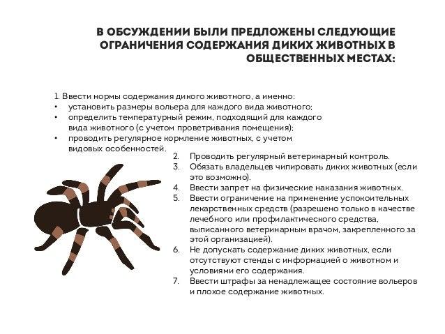 2. Проводить регулярный ветеринарный контроль. 3. Обязать владельцев чипировать диких животных (если это возможно). 4. Вве...