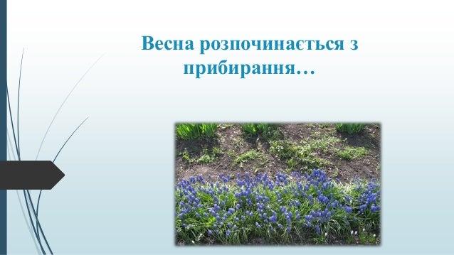 Весна розпочинається з прибирання…