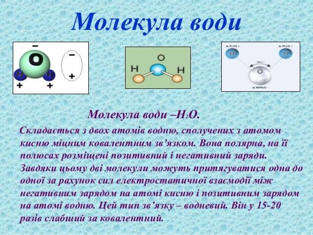 Молекула води Молекула води –Н2О. Складається з двох атомів водню, сполучених з атомом кисню міцним ковалентним зв'язком. ...