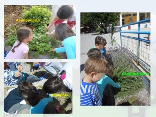 Παρουσίαση: Παρασκευή Μιλούλη Νηπιαγωγείο Λίμνης Εύβοια Σχολικό Έτος 2016-17