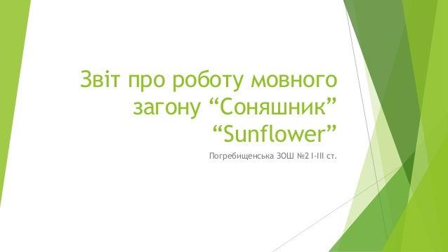"""Звіт про роботу мовного загону """"Соняшник"""" """"Sunflower"""" Погребищенська ЗОШ №2 І-ІІІ ст."""