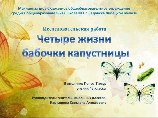 Бабочки капустницы на малине: как бороться народными и химическими ... | 479x638