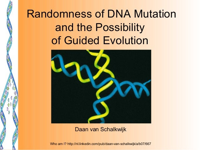 Randomness of DNA Mutation     and the Possibility    of Guided Evolution                    Daan van Schalkwijk    Who am...