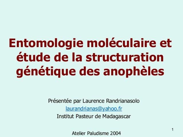 Entomologie moléculaire et étude de la structuration génétique des anophèles      Présentée par Laurence Randrianasolo    ...