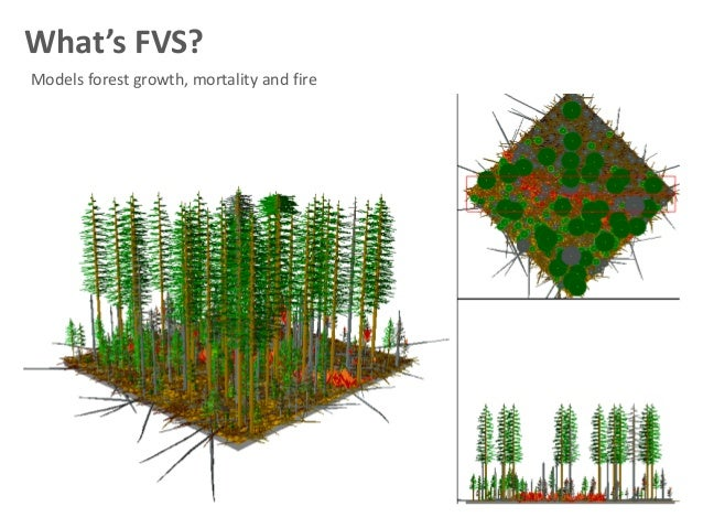 What Does Api Stand For >> R and the forest vegetation simulator