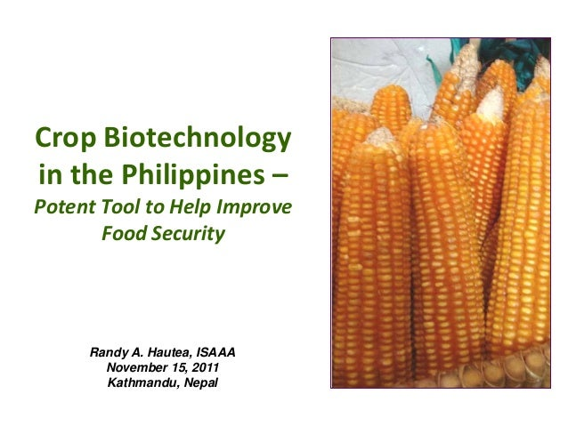 Crop Biotechnology in the Philippines – Potent Tool to Help Improve Food Security Randy A. Hautea, ISAAA November 15, 2011...