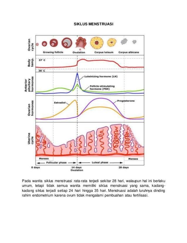 Siklus Menstruasi Pada Wanita Siklus Menstruasi Rata Rata Terjadi Sekitar  Hari Walaupun Hal