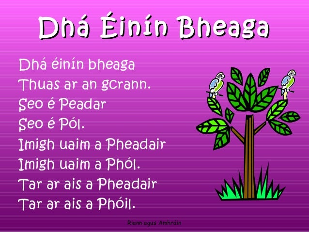 Image result for dhá éinín bheaga